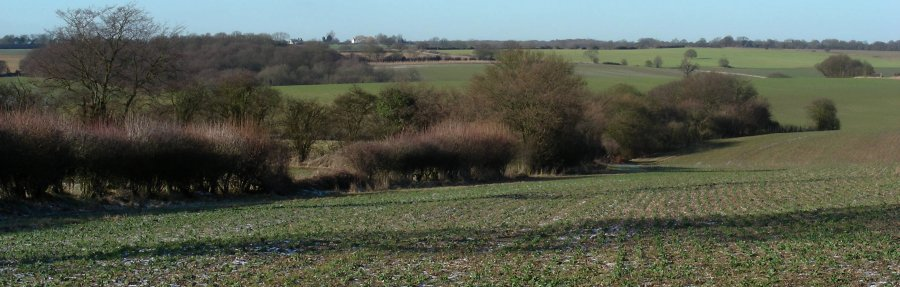 View from the Chain Walk between Woolston Farm, Haultwick and to Green End.